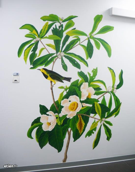fresque-cabinet-dentiste-audubon