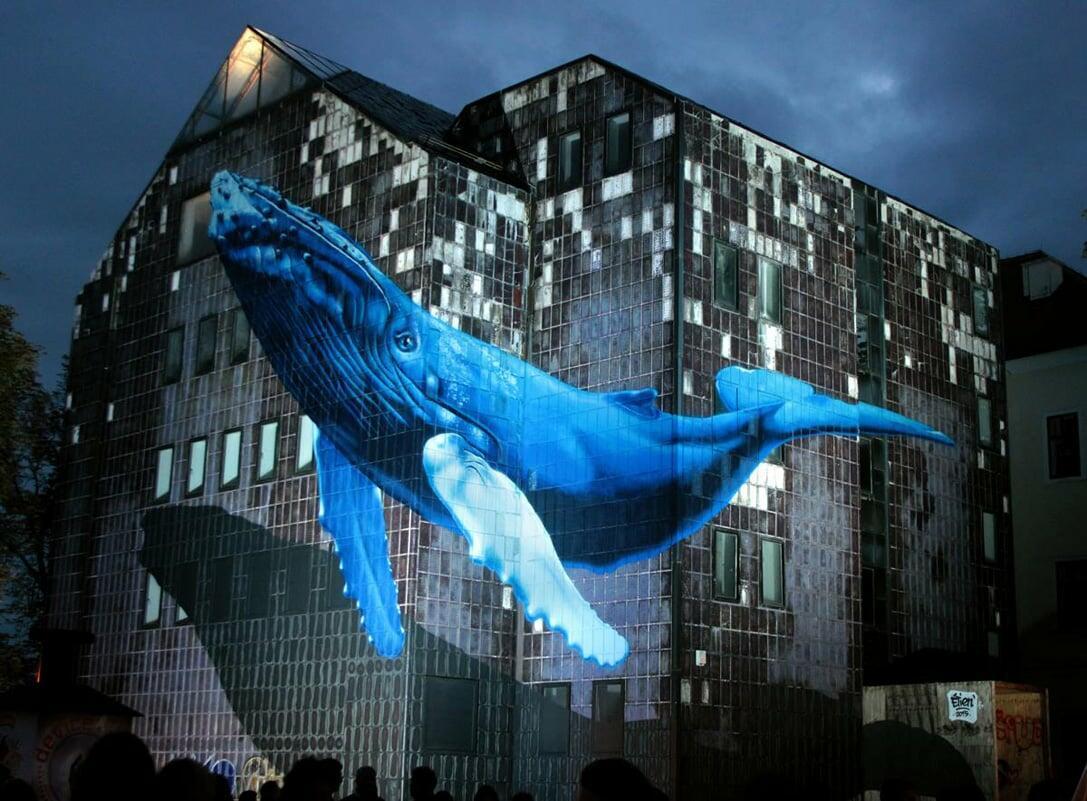 anamorphose baleine zagreb