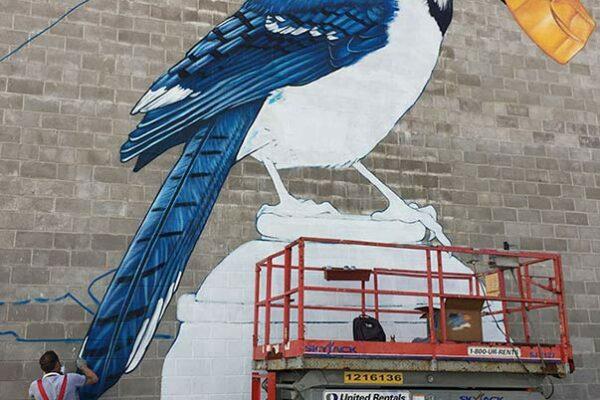 fresque-murale-geai-bleu-04