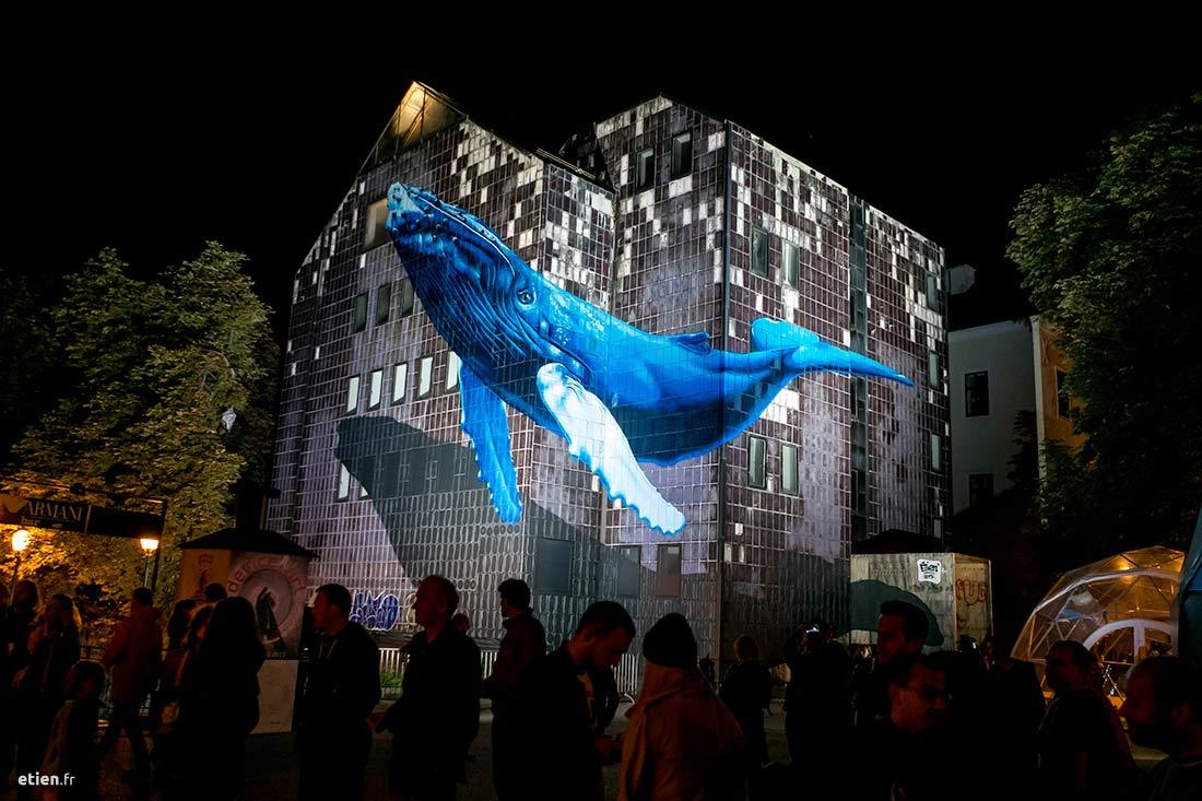 """Anamorphose Baleine à bosses - Réalisée dans le cadre de l'exposition StreetArt 2.0<br/> Aérosol - 180m2 env. <em>photo de Nina Đurđević</em><br/> Zagreb, Croatie - 2015 - <em><a href=""""https://etien.fr/anamorphose-baleine/"""" target=""""_blank"""">voir + de photos</a></em>"""