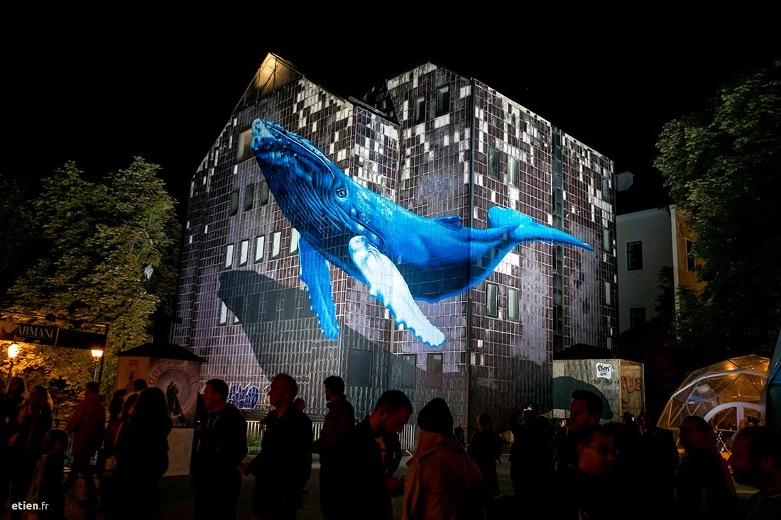 "Anamorphose Baleine à bosses - Réalisée dans le cadre de l'exposition StreetArt 2.0<br/> Aérosol - 180m2 env. <em>photo de Nina Đurđević</em><br/> Zagreb, Croatie - 2015 - <em><a href=""https://etien.fr/anamorphose-baleine/"" target=""_blank"" rel=""noopener noreferrer"">voir + de photos</a></em>"