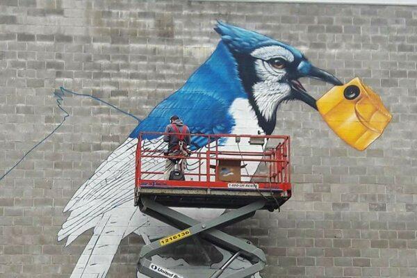 fresque-murale-geai-bleu-02