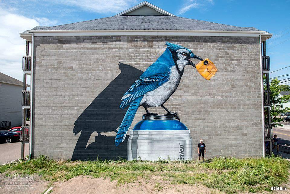 façade peinte représentant un geai bleu, réalisé dans le cadre du festival Inspire, Moncton Canada
