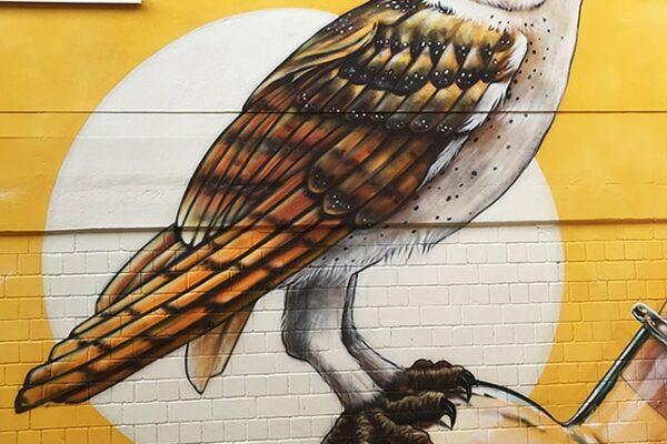 MuralStudio_Gonnheim01